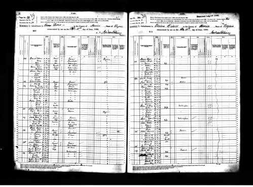 image of 1880 census return for Patrick Henry Roane